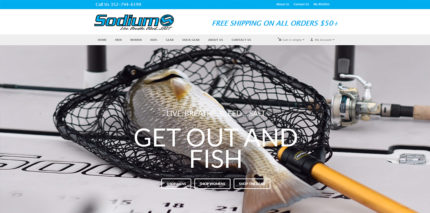 Socialmedia designs citrus county web design and consulting for Sodium fishing gear